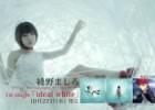 【Vmoe字幕組】绫野真白 / ideal white【Fate OP】